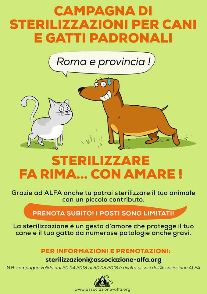 Campagna sterilizzazione Roma e provincia