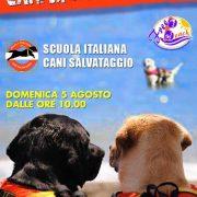Novità interessanti per gli amanti dei cani al Free Beach
